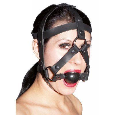 Harness with Gag Ball