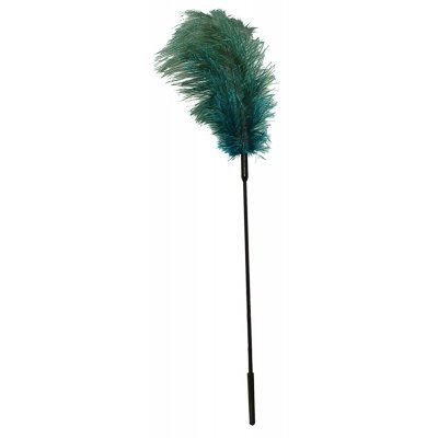 Ostrich Feather turqouise