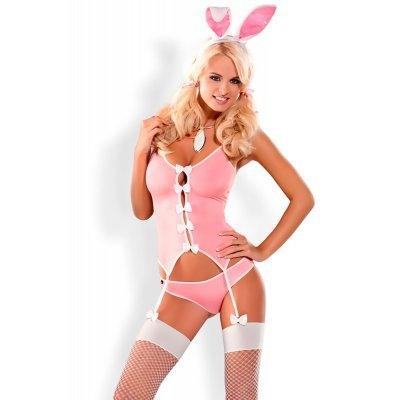 Bunny Basque and Briefs